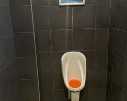 SARL Jean-Paul Betoulle - Limoges - Plomberie urinoir